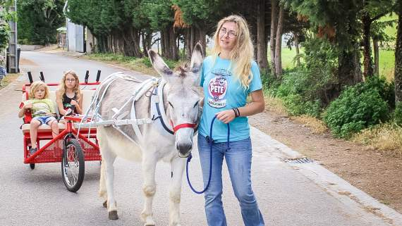 Donkey tour in the Midi-Pyrenees