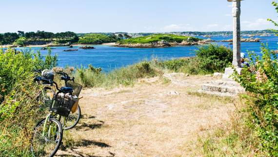 The Finistère: Coastal bike tour about the macroalgae