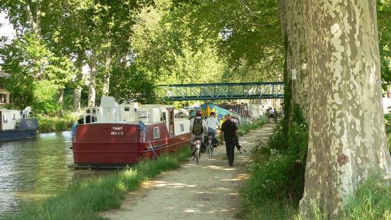 Guided bike tour on the Canal du Midi